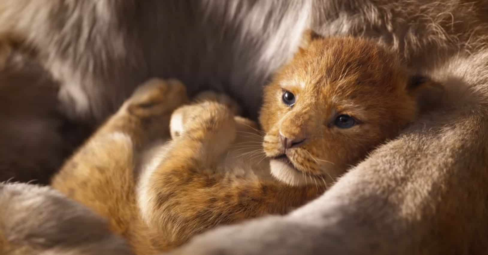 Roi-Lion-2019-film-Simba