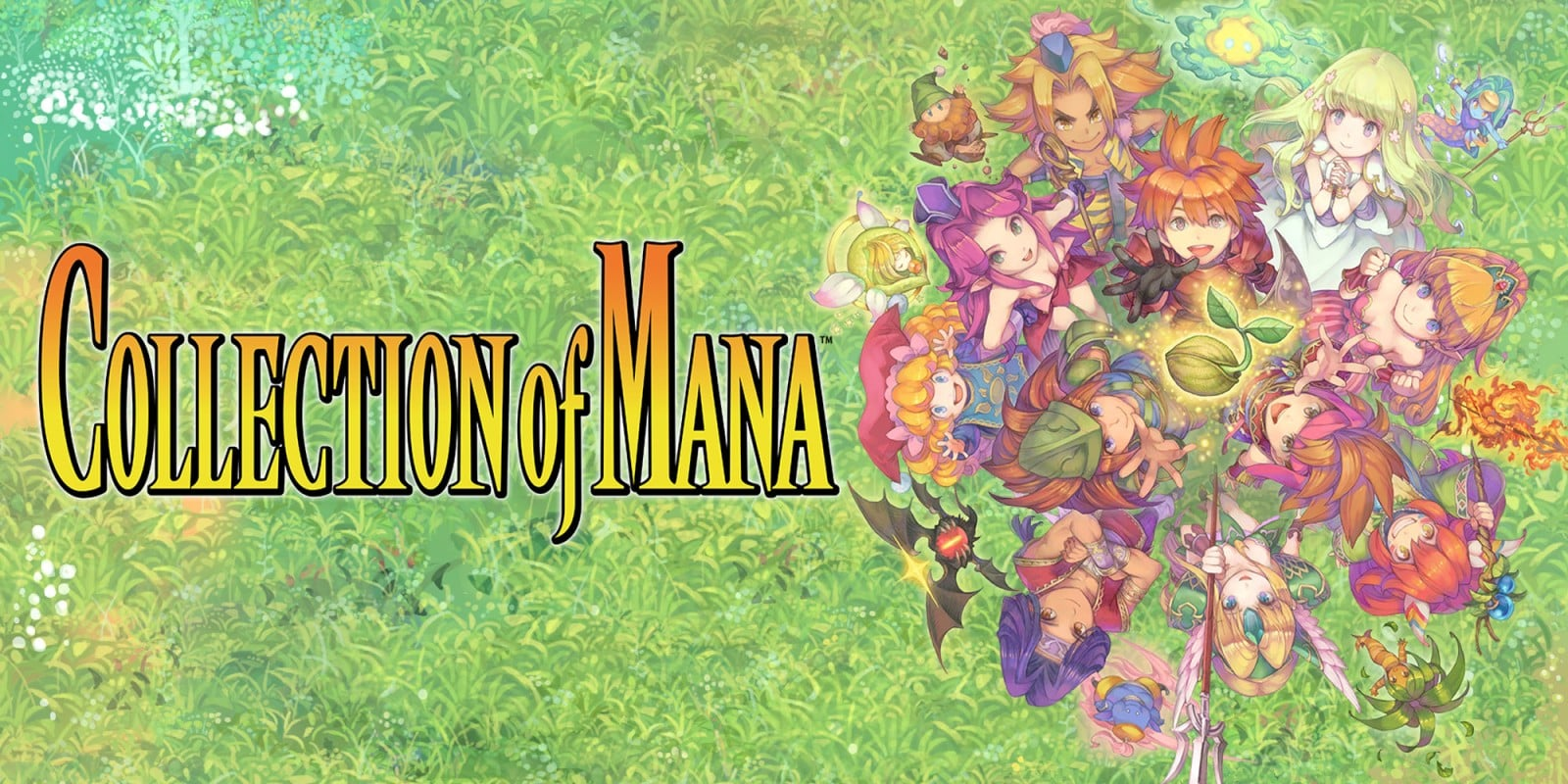Collection Mana Nintendo Switch