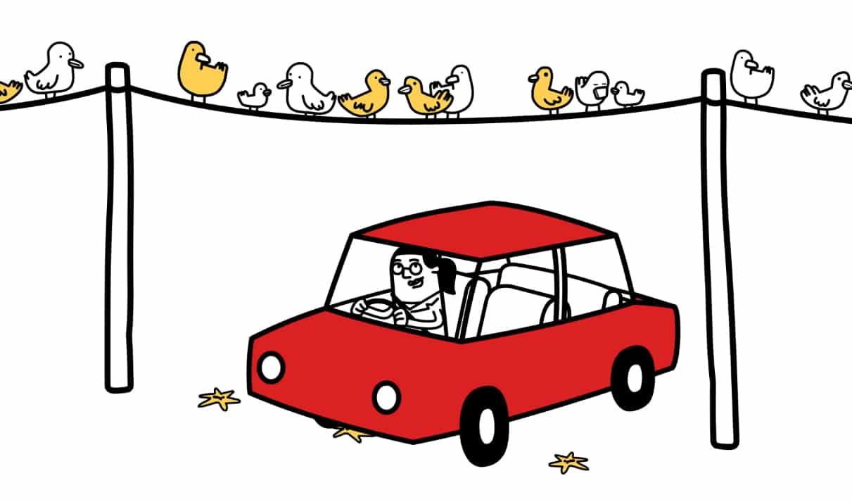 Nettoyer voiture caca oiseau