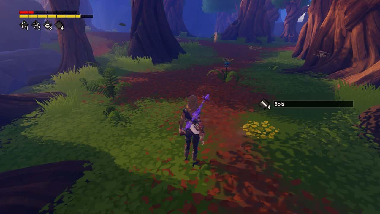 Test Windbound Zelda